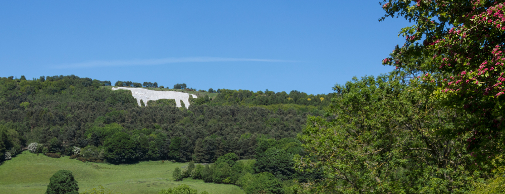 image of the kilburn white horse on the hill
