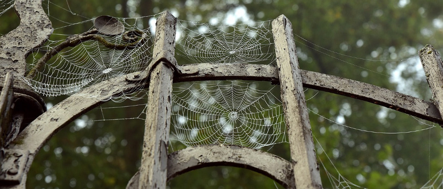 gates with cobwebs on at Halloween events in Yorkshire