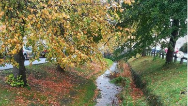 Helmsley stream in the Autumn