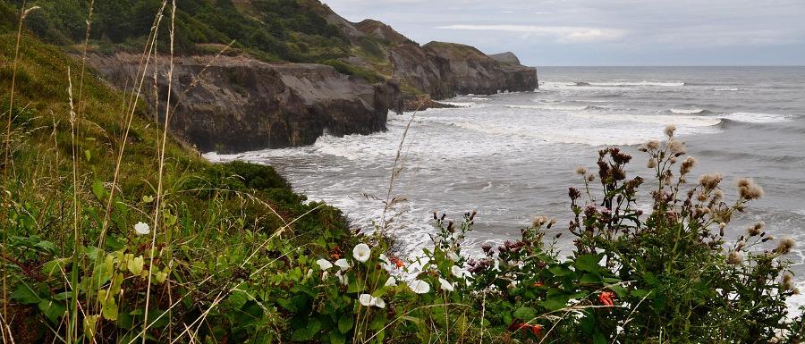 Robin Hood's Bay coastline