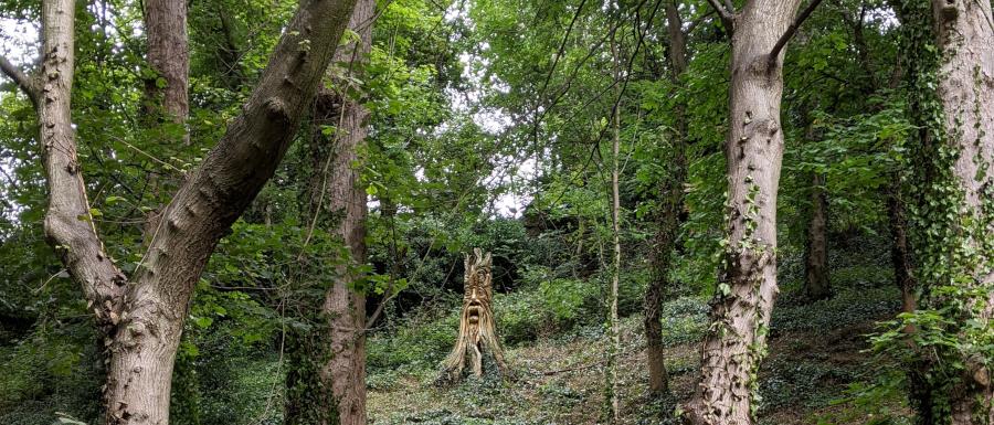 tree carving in Knaresborough