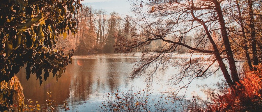 Yorkshire winter walk by a lake