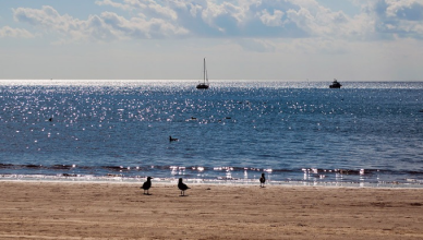beach and sea in North Yorkshire